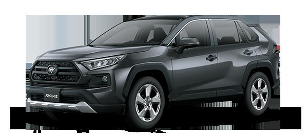 Toyota Rav4 adventure 2021 GRAY ME